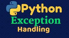 Python, Handle, Calm, Learning, Teaching, Education, Studying, Knob