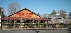 Mason Farms, I LOVE this place!