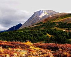 Flat Top Mountain in Anchorage, Alaska. Can't believe I hiked this mountain! It took me like 8 hours there and back. I cried almost the whole back. Lol!