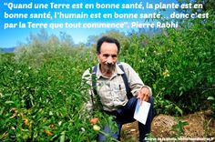 Citation- Pierre Rabhi