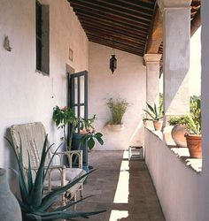 Agrifuturismo, your holiday home in Tuscany