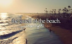 The Smell of the Beach girly summer quote beach summertime summer quote just girly things I Love The Beach, Summer Of Love, My Love, Summer Goals, Summer 3, I Smile, Make Me Smile, Justgirlythings, Reasons To Smile