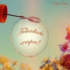 A felicidade é breve e frágil como uma bolha, excelente analogia.