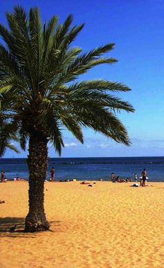http://www.webtenerife.co.uk/places-interest/beaches/?tab=1&page-index=3  Playa Las Teresitas, Tenerife, Islas Canarias // Beach Las Teresitas, Tenerife, Canary Islands, Spain // Strand Las Teresitas, Teneriffa, Kanarische Inseln  #visitTenerife
