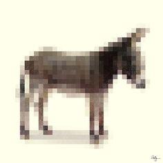 Censored Donkey by Phil Jones.