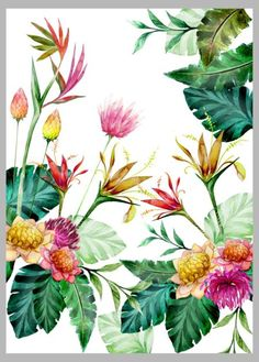Victoria Nelson - Tropical Pink Yellow Copy