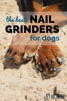 How to use dog nail grinders + our picks for the best!                                                                                                                                                                                 More