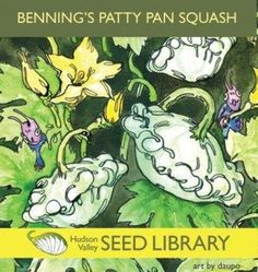 Benning's Patty Pan Squash Hudson Valley Seed Library Art pack is great for framing 30 Seeds per pack Art by daupo Growing Squash, Library Art, Garden Seeds, Seed Starting, Propagation, Hudson Valley, House Plants, Indoor House Plants, Foliage Plants