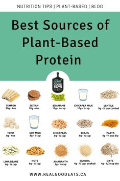 Not all plant-based proteins are created equally, so I'm breaking down the best sources of plant-based protein on the market to help you chose the ones that are right for you. #plantbased #protein #vegetarian #vegan Vegetarian Recipes Dinner, Healthy Recipes, Dinner Recipes, Healthy Fats, Healthy Eating, Food Hacks, Food Tips, Make Hummus, Healthy Weeknight Dinners