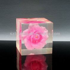 Bildergebnis für with rose inside