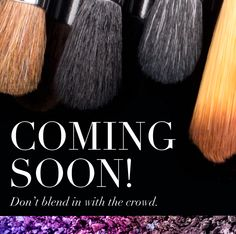 New Sigma brushes coming soon! http://www.sigmabeauty.com/makeup_brushes_s/159.htm&Click=62760