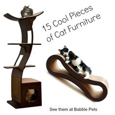 Cat furniture used to always involve towers of carpet and unattractive particle board. Those types of cat trees are still available and certainly are functional, but there are other more interesting and attractive options out there. Many modern choices will blend in better with your home decor, and some can double as bookshelves. When looking…