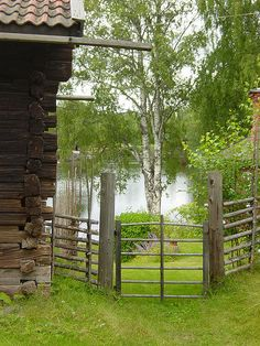 Green as in swedish spring Grind och staket vid vacker sjö i Falun, Sverige - Fence and lake view in Falun, Sweden Carl Larsson, Swedish Style, Garden Gates, Country Life, Country Living, Norway, Scandinavian, Places To Go, Beautiful Places