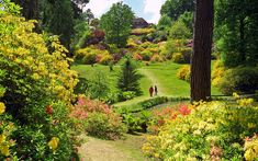 Leonardslee Gardens, West Sussex, England | Brightly color… | Flickr