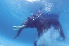 Andaman Island, India