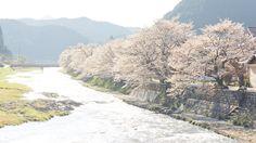 https://flic.kr/p/s8YRu1   a bright river   Taken at Mikamo, Okayama prefecture Japan. (岡山県真庭市美甘)