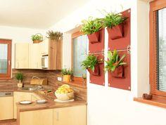 İç Mekan ve Dış Mekan Yeni Nesil Dikey Bahçeler : Plantas e flores por Butik Bahçe Dikey Bahçe ve Peyzaj Tasarımları