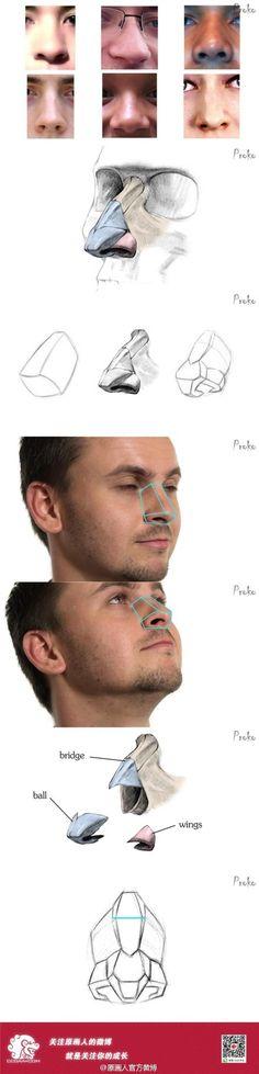New eye anatomy proko 60 ideas Eye Anatomy, Facial Anatomy, Anatomy Drawing, Human Anatomy, Drawing Heads, Nose Drawing, Human Drawing, Drawing Tips, Body Study