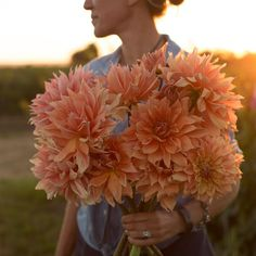 love slow flowers from floret farm like these bronze dinnerplate dahlias -seasonal and sustainable organic cut flowers by Erin Benzakein. Click through to discover her beautiful new book A Year in Flo Rare Flowers, Cut Flowers, Beautiful Flowers, Growing Raspberries, Garden Catalogs, Flower Farmer, Seasonal Flowers, Foliage Plants, Types Of Flowers