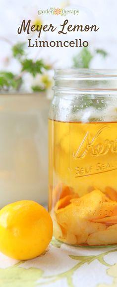 How to make Meyer lemon lemoncello.