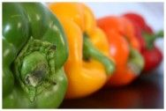 Pimentão: doenças bacterianas e fúngicas - Artigos sobre Horticultura - Cursos CPT