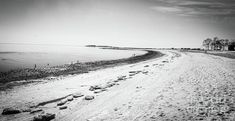 January's beach by Victory Designs Westport Connecticut, Long Island Sound, Dallas Morning News, Photography For Sale, Abbey Road, Winter Landscape, Beach Art, Staycation, Gold Coast