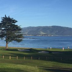 It's beautiful on the left coast! #nofilter #pebblebeach #montereylocals #pebblebeachlocals - posted by Danielle Slaton https://www.instagram.com/daniellevslaton - See more of Pebble Beach at http://pebblebeachlocals.com/