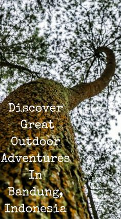 Discover Great Outdoor Adventures in Bandung, Indonesia. Click to read the full travel blog post at http://www.divergenttravelers.com/things-to-do-in-bandung-indonesia/