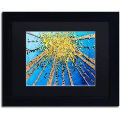 Trademark Fine Art Brown Aspen Sky Canvas Art by Roderick Stevens, Black Matte, Black Frame, Size: 11 x 14