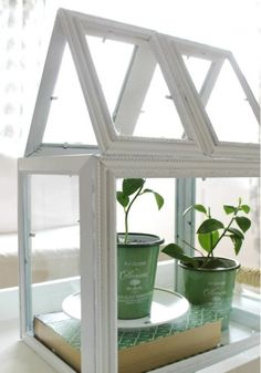 Table top greenhouse Frames (2) 8x10         (2) 5x7 (4) 4x6