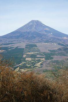 Mt.Fuji from Mt.Echizen #PhotojournalismJapan