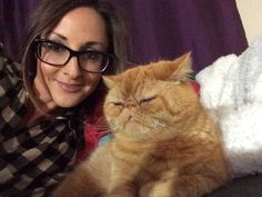 Mr Tinkles Cat | Pawshake Auckland