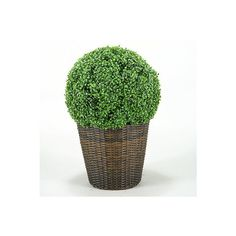 Boxwood Ball In Round Basket ($349) ❤ liked on Polyvore featuring home, outdoors, outdoor decor, handmade baskets, outdoor garden decor, colored baskets, outdoor patio decor and round basket