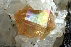 Xenotime crystal / Wasserfallköpfe, Pfitsch Valley, Italy