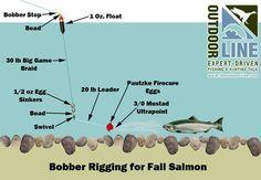 salmon river fall salmon tackle set up - Google Search
