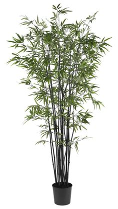 Nearly Natural - 6.5' Black Bamboo Silk Tree