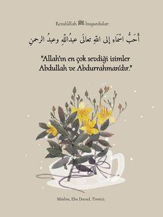 Hadith, Hadith-i Sheriff, Short Hadith-i Sheriffs – Nicewords Hafiz, Islamic Quotes, Beautiful Words, Cool Words, Allah, Muslim, Bike, Feelings, Handsome Quotes