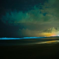 Bio-luminescence in Goa