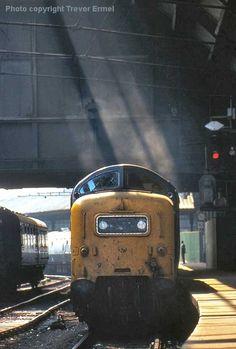 Deltic Electric Locomotive, Diesel Locomotive, Electric Train, British Rail, Great Western, Train Tickets, Steam Engine, Diesel Engine, Wall Prints