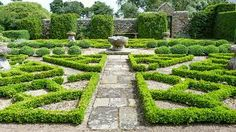 More stunning topiary at Herterton House Gardens near Morpeth in Northumberland.