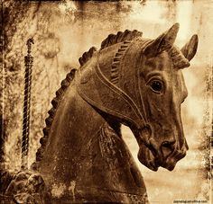 carousel horse, idaho falls museum | Flickr