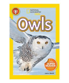 National Geographic Kids: Owls Paperback