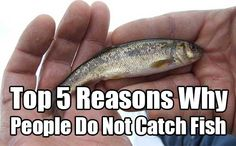 Top 5 Reasons Why People Do Not Catch Fish