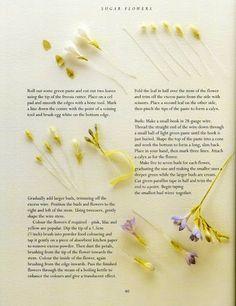sugar flowers - FRESIA 3 - Álbumes web de Picasa
