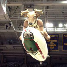 Milwaukee Bucks fun!