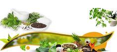 Qmed Biotech Product List – Qmed Biotech