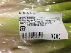 Negi Leek (Kanto) / Green Onion Japanese Label