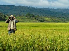 Africa and China Agriculture: The New Breadbasket? The Future of Food- NGC