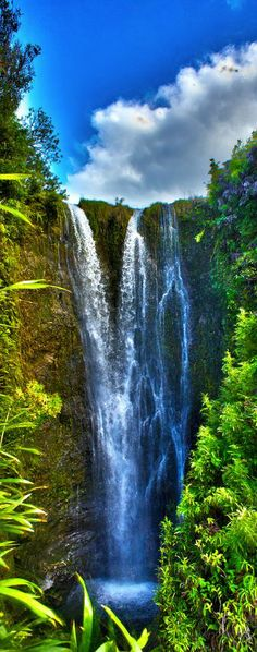 Secret waterfall in Papaaea Ahupua`a, Haiku, Maui, Hawaii. I would love to travel to Hawaii one day and just explore the jungles and waterfalls. Some of the most beautiful things you can see in this world. Maui Travel, Hawaii Vacation, Vacation Spots, Maui Hawaii, Hawaii Usa, Vacation Travel, Vacation Places, Dream Vacations, Travel Tips