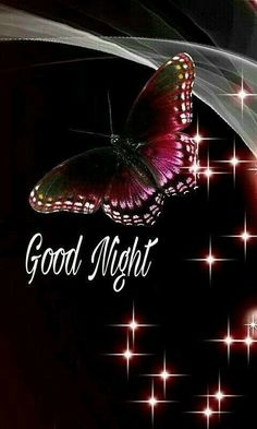 Good Night Beautiful, Good Night I Love You, Good Night Sweet Dreams, Good Night Image, Good Night Quotes, Good Morning Good Night, Good Night Friends Images, Good Night Thoughts, Good Night Messages